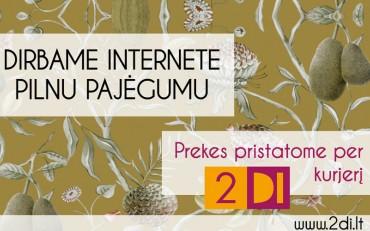 2di internetine parduotuve