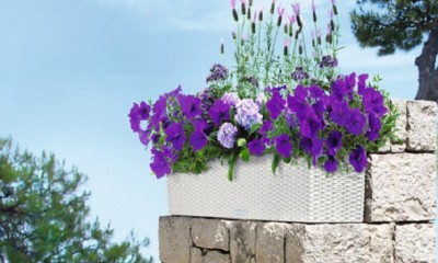 gėlių vazonai Lechuza
