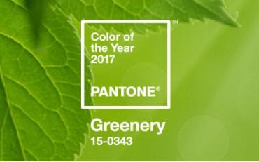 Pantone 2017 spalva yra greenery
